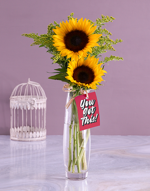 get-well: You Got This Sunflower Gift!