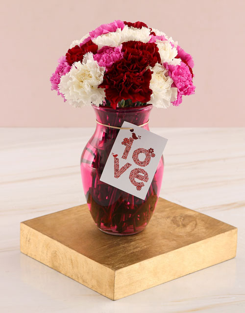 carnations: Love Carnation Mix in Lilac Vase!