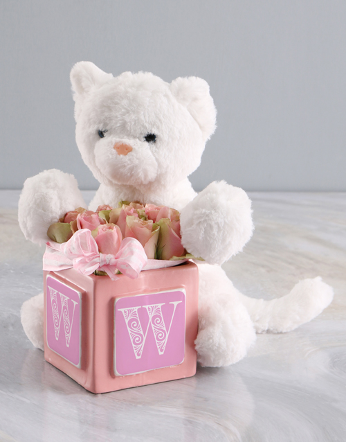 baby: Welcome Home Baby Teddy And Pink Rose Gift!