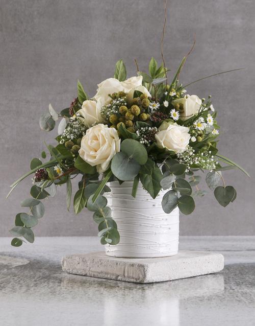 christmas: Cream Rose Delights In White Ceramic Pot!