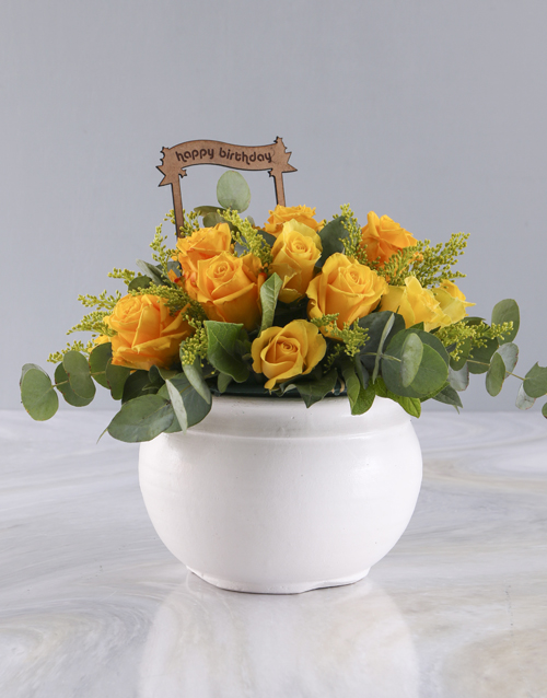 roses: Birthday Yellow Roses in White Pot!