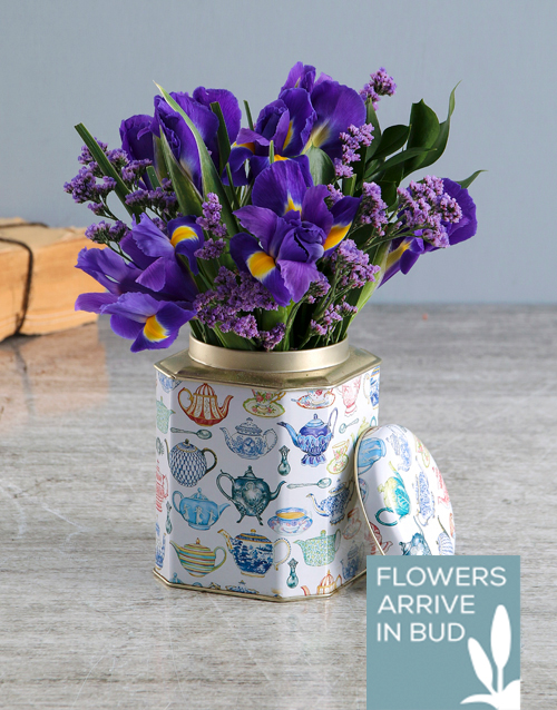 whats-new: Purple Irises In Tea Tin!