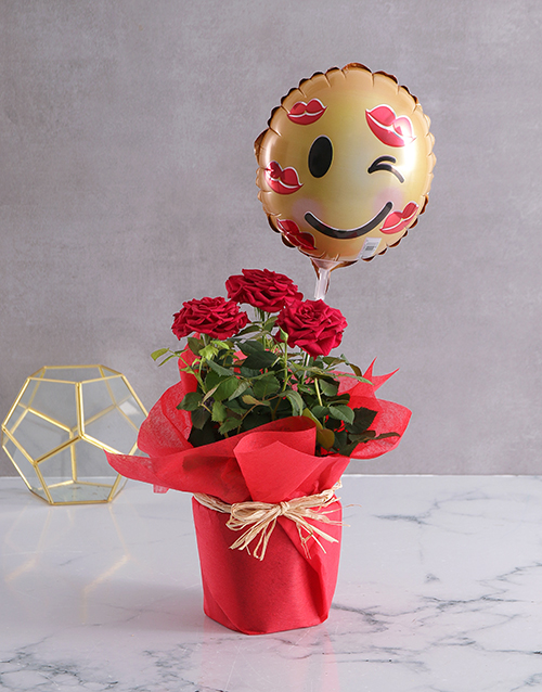 colour: Red Rose Bush With Cute Emoji Balloon!